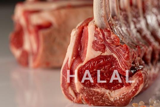 importateur viande halal suisse